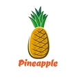 Cartoon fresh pineapple fruit poster vector image