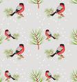 bullfinch seamless background vector image