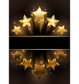Banner with Five Stars vector image vector image