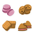 delicious dessert chocolate cookies set collection vector image