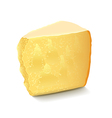 Parmesan cheese isolated on white vector image