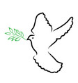 dove olive vector image