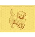 Dog Golden Retriever on a yellow ornamental backgr vector image