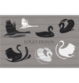 Set white and Black Swans Logo on wood background vector image