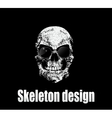 Design for poster or t-shirt print with skull vector image