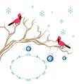 Christmas background cardinal bird brunch vector image