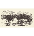 Beautiful romantic tree bench drawn sketch vector image