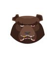 angry bear in green beret aggressive grizzly head vector image