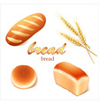 Set breads bakery products vector image vector image
