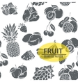 Seamless pattern with monochrome decorative fruit vector image