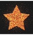 Gold star logo sparkling effect Star burst of vector image