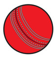 isolated cricket ball vector image