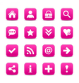 Pink satin icon web button with white basic sign vector image