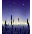 Starry night landscape with reeds vector image