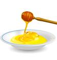 fluid honey vector image