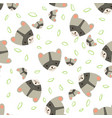 pattern raccoon vector image