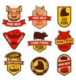Pork meat butcher shop labels vector image