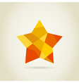 Star abstract vector image
