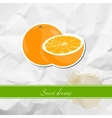 Ripe orange vector image