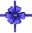 blue gift bow with ribbon vector image