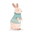 Cute rabbit vector image