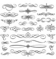 Vintage calligraphic design elements swirls vector image