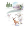 watercolor winter landscape with deers vector image
