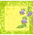 Flowers frame butterfly and leaves vector image