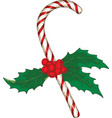 christmas candy cane with mistletoe vector image