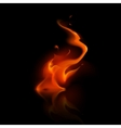 Red Fire Flame Bonfire on Background vector image
