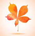 Orange watercolor painted chestnut leaf vector image