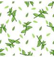 sketch herbal mint tea hand drawn seamless pattern vector image