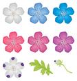 color flower set vector image vector image