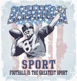 American sport football vector image
