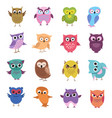 cute cartoon owl characters set vector image