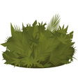 Tropical greenery vector image