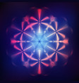 abstract shining cosmic star vector image