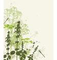 green abstract grass vector image