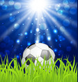 Soccer ball on green grass with shine effect vector image