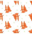 pattern squirrel vector image