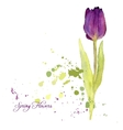 card with watercolor tulip vector image