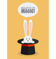 Magic top hat with rabbit vector image