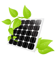 Solar cell leaves Vector Image