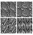 african zebra stripes seamless patterns vector image