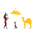 egypt symbols - anubis black cat camel pyramids vector image