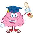 Brain Character Graduate Holding up A Diploma vector image vector image