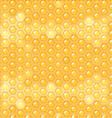 fluid honey in honeycomb vector image