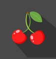 cherry cartoon flat icondark background vector image