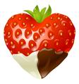 strawberry chocolate vector image