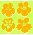 Hibiscus Collection in yellow vector image